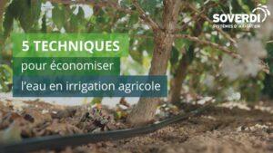 5-techniques-pour-économiser-leau-en-irrigation